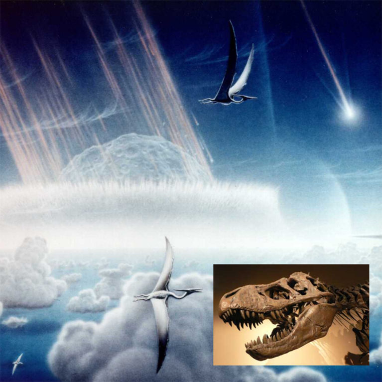 The end of the Cretaceous period 65 Myrs ago